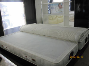 Aloe Vera Serta Sleep Science King Natural Latex Foam Mattress pictures & photos