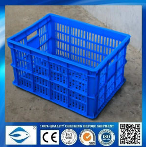 Factory Customized Plastic Container pictures & photos