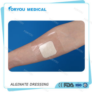 FDA Approved Calcium Alginate Dressing Antibacterial Silver Non-Adherent Pad Alginate Dressing for Wounds pictures & photos