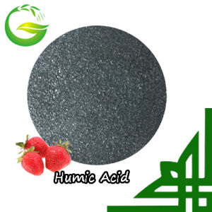 90% Water Soluble Organic Humic Acid pictures & photos