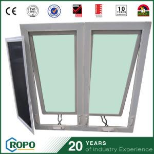 PVC Double-Pane Hand Crank Windows pictures & photos