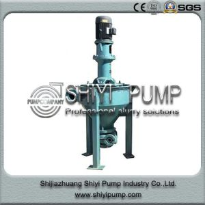 High Performance Vertical China Froth Pump pictures & photos