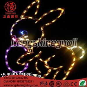 2017 LED Decorative Waterproof 2D Motif Rope Decorative Light for Easter Decoration pictures & photos