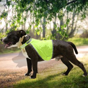 fashion All Size Pet′s High Reflective Safety Vest with Ce pictures & photos