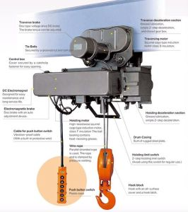 Quality 3t Electric Wire Rope Hoist From China Manufacturer pictures & photos