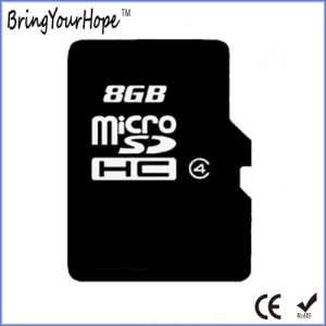 Full Capacity 8GB Micro SD Hc Card (8GB TF) pictures & photos