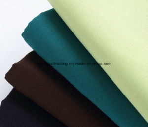 300dx300d, 160G/M2; Polyester Mini Matt Fabric/Oxford Fabric pictures & photos