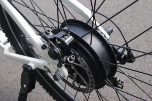 Latest Electric Mountain Bicycle 36V 350W Geared Hub Motor Ebike pictures & photos