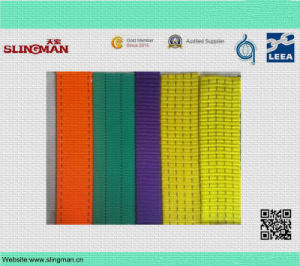 En1492-1polyester Double Ply Flat Webbing Sling pictures & photos