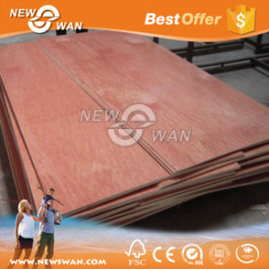 18mm Bintangor Plywood Price, Mixed Hardwood Commercial Plywood pictures & photos