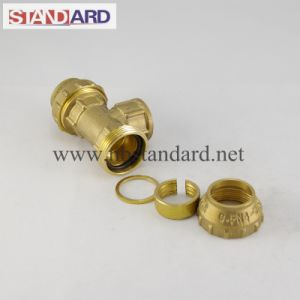 Equal Brass Tee PE Fitting pictures & photos