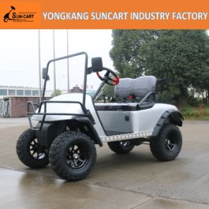 2 Seater Indoor Electric Golf Car with No Roof, Silivery Cart Body with Black and Gray Seater Color pictures & photos