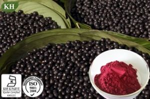Acai Berry Extract Anthocyanidins, Proanthocyanidins pictures & photos