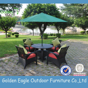 Hot Sale Outdoor Rattan Dining Set (TY0001)