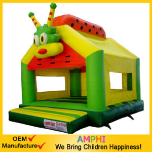 Inflatable Bounce House/Inflatable House pictures & photos