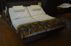 Luxury Electric Bed with Memory Foam Mattress (Comfort200AC) pictures & photos