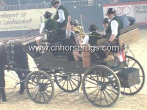 Horse Carriage pictures & photos