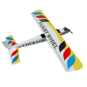 Courage-10 RC Airplane (F063)
