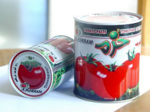 High Quality Canned Tomato Paste 800g