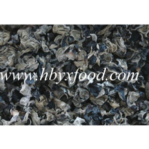 2-2.5cm Top Quality Dry White Back Fungus pictures & photos
