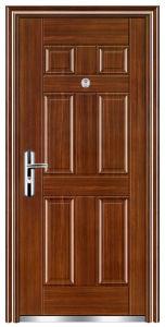 Steel Door (FX-C0140) pictures & photos