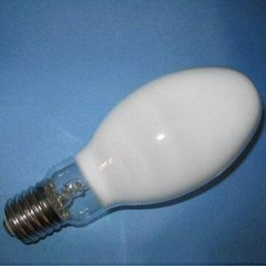 120v Self Ballasted Mercury Lamp (ML-306) pictures & photos