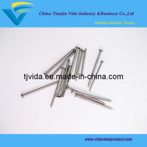 Wire Wooden Nails From Directly Factory pictures & photos