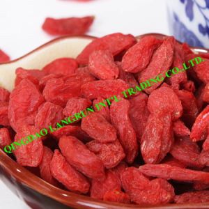 Goji Berry 220-500 Grains/50g