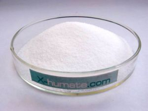 Sodium Bicarbonate Food Grade pictures & photos