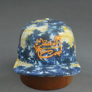 Colorful Square Flat Brim Hat pictures & photos