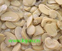 6/2840g Canned Mushroom P&S