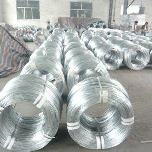 Electro Galvanized Iron Wire pictures & photos