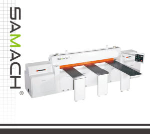 High-Qulaity Professional Woodworking Panel Saw (RCJ2700A) 2700mm 5.5kw pictures & photos