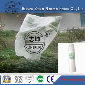 Anti-Aging PP Non Woven Fabric Using for Agriculture pictures & photos