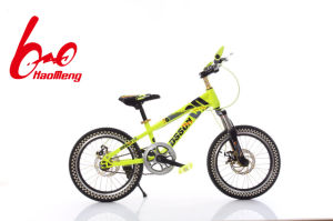 Factory Manufacture Double Dics Brake Mountain Bicycle pictures & photos