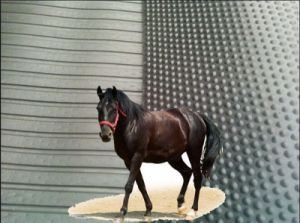 Non Slip Durable Stable Cow Floor Horse Stall Mats pictures & photos