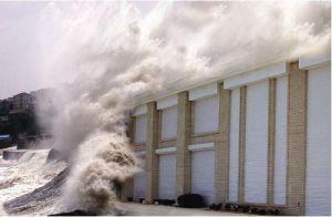 Top Quality Hurricane Shutter Door (HSS05B) pictures & photos