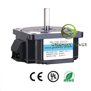Micro 90W 3000rpm Brushless DC Motor with CE pictures & photos