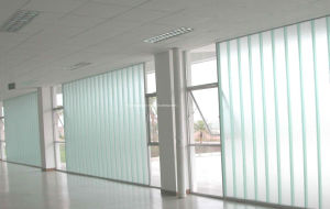 Reflective Glass/Appliance/Architectural/ Glass Curtain Wall/Building Glass pictures & photos
