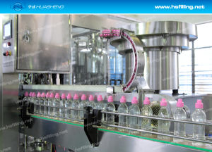 Mango Juice Production Line (CRGF Series)