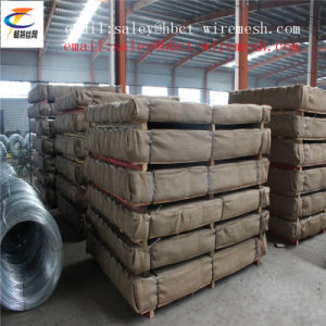 Anping Carbon Steel of Woven Vibrating Screen Mesh pictures & photos