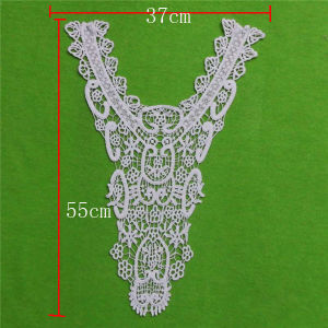 Fashion Apparel Caaessories Garment Lace Collar (cn132) pictures & photos