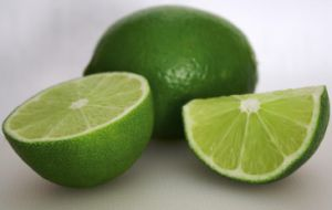 Manufacturer Synephrine Powder Citrus Aurantium Extract pictures & photos