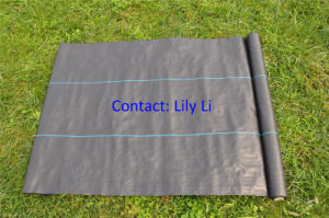 PP Woven Fabric for Garden or Greenhouse pictures & photos