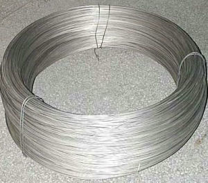 304 Grade Stainless Steel Coiled Tube pictures & photos