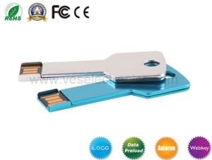 Metal USB Stick Promotional USB with Logo USB Key pictures & photos