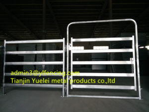 Factory Direct High Quality Livestock Panels Livestock Fence Panel Hot Sale pictures & photos