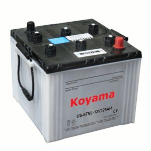 Dry Charge Tractor Battery -DIN60013-12V100ah (60013) pictures & photos
