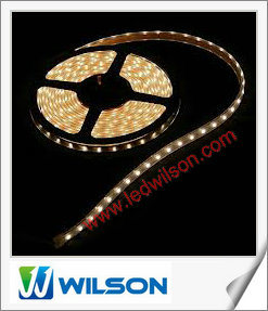 High Light SMD 5050 Waterproof Flexible LED Strip Light