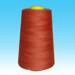 40/2 5000yard Polyester Sewing Thread pictures & photos